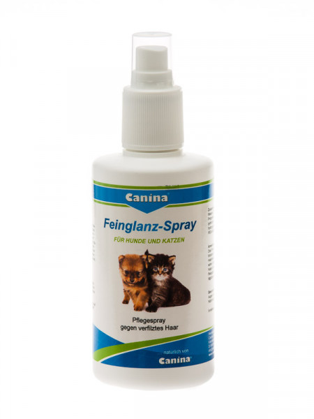Feinglanzspray, 2 x 200ml